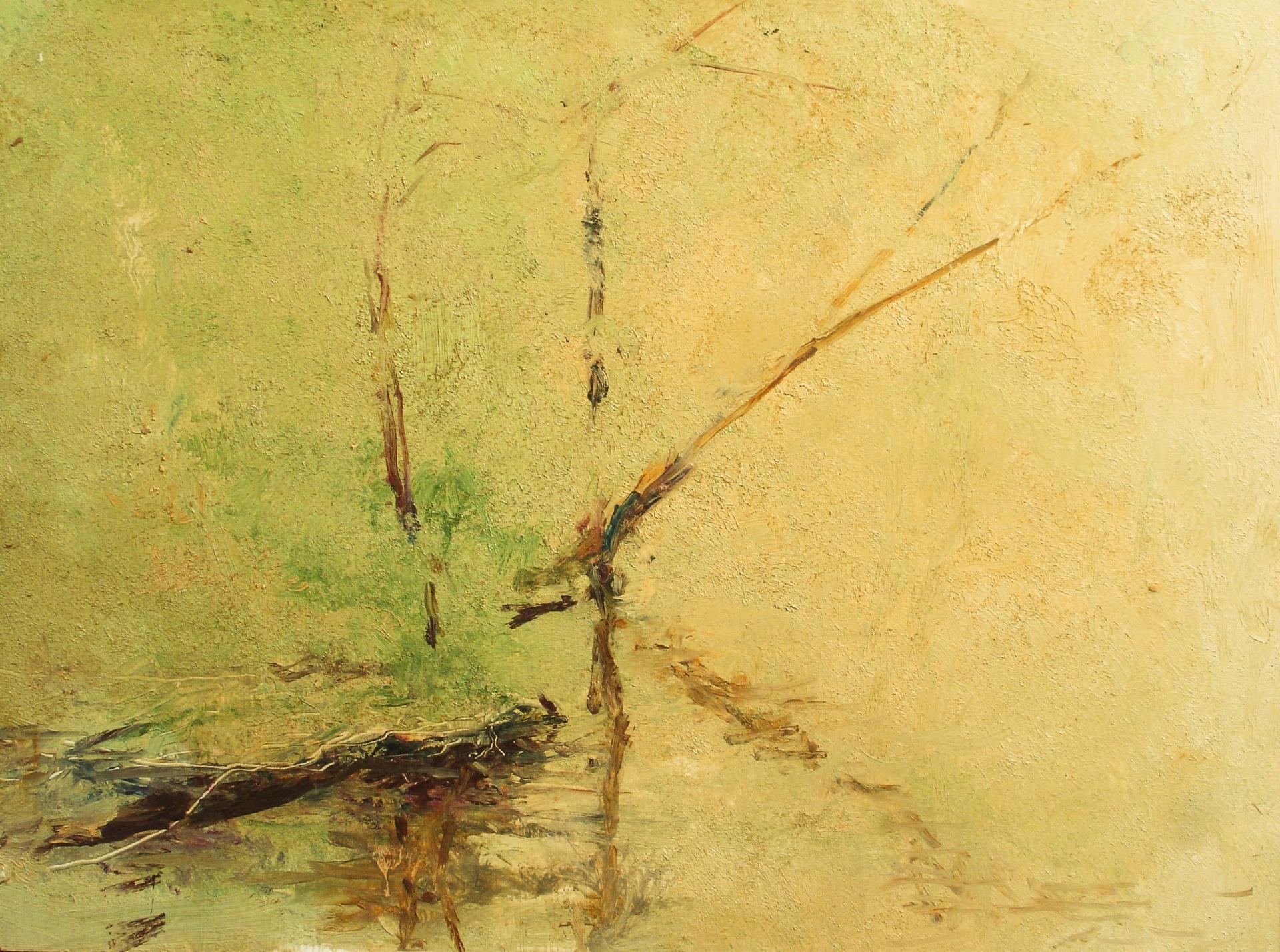 "Fallen Tree  12""x16""  oil on panel"